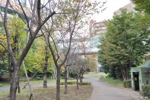 成育ほほえみ保育園周辺環境